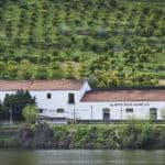Portwein – Ikone und Kulturgut aus Portugal