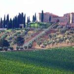 Exklusive Weine aus der Toskana – Genuss und Geschichte